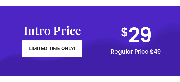 Offer Price - SaaSHub WordPress Theme