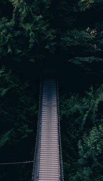 Break Bridge